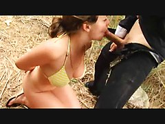 Swingers couples sucking and fucking in field